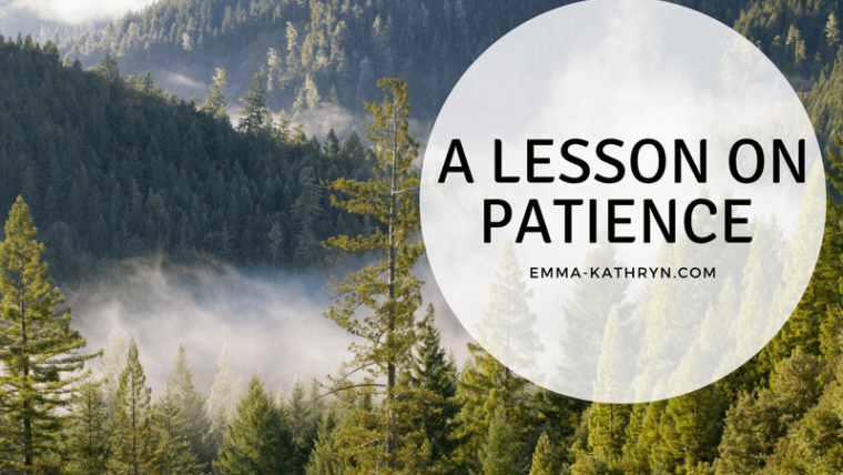     A lesson on patience