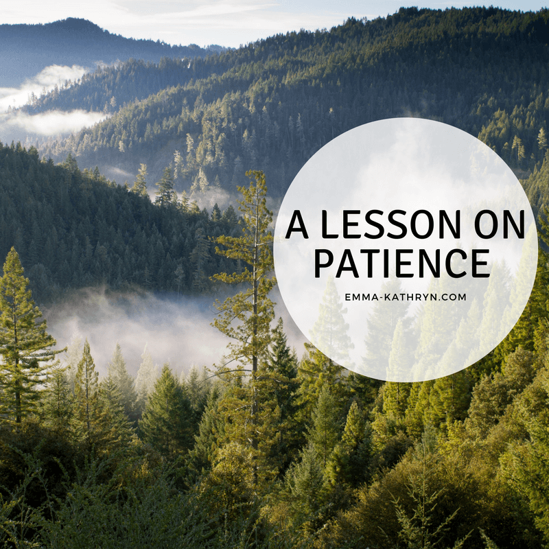 ||||A lesson on patience